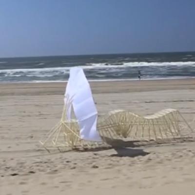 Художник з Голландії створює скульптури, які рухаються від сили вітру (відео)