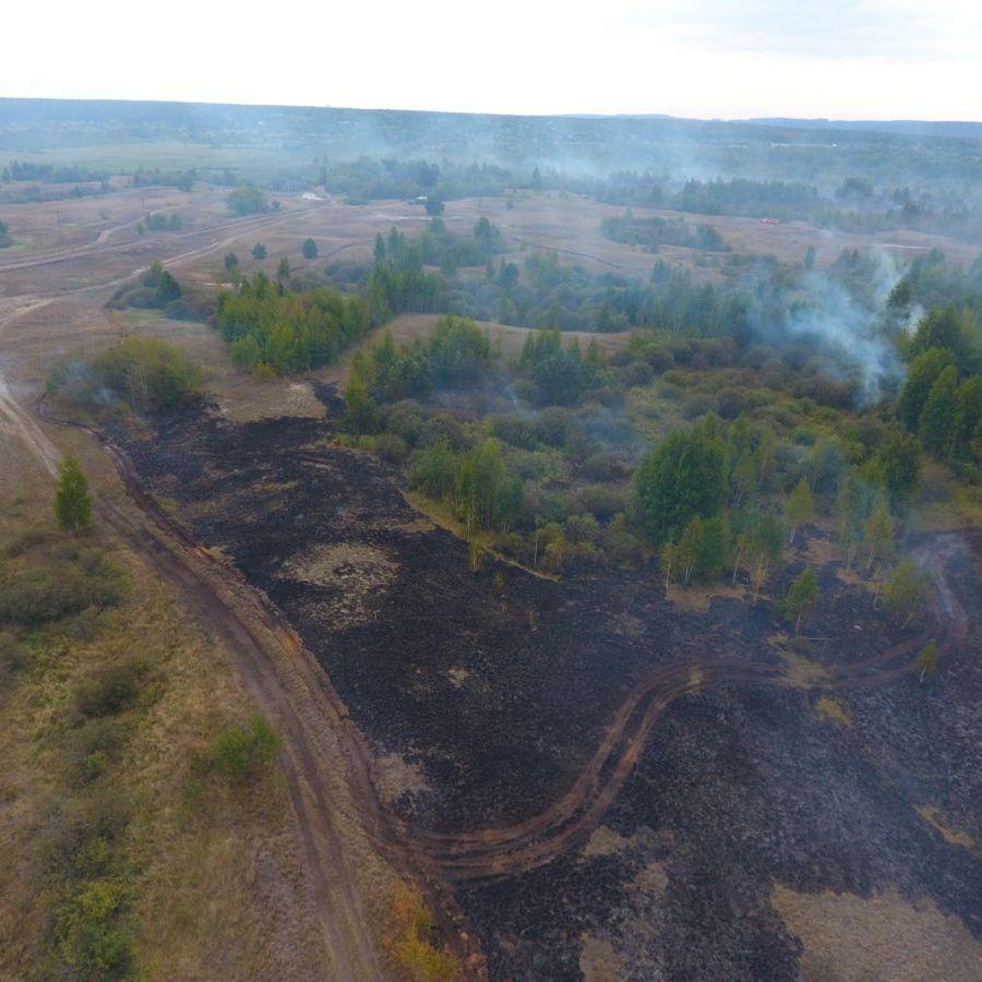 На Полтавщині горять близько 9 гектарів торфовища