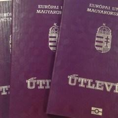 На Закарпатті українцям видають угорські паспорти під шампанське (відео)