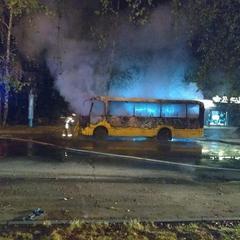 У Чернівцях вночі згоріла маршрутка (фото, відео)