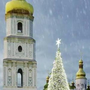 Стало відомо, якою буде головна ялинка Києва