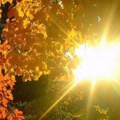 Неділя в Україні буде теплою, сухою і малохмарною