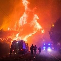 Масштабна лісова пожежа спалахнула біля Лісабону, сотні евакуйованих