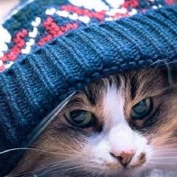 Синоптик повідомила, коли в Україні почнеться похолодання