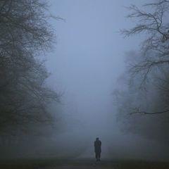 Більшість території України сьогодні накриє туман - ДСНС
