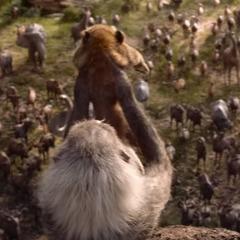Студія Disney опублікувалатізерфільму «Король лев» (відео)