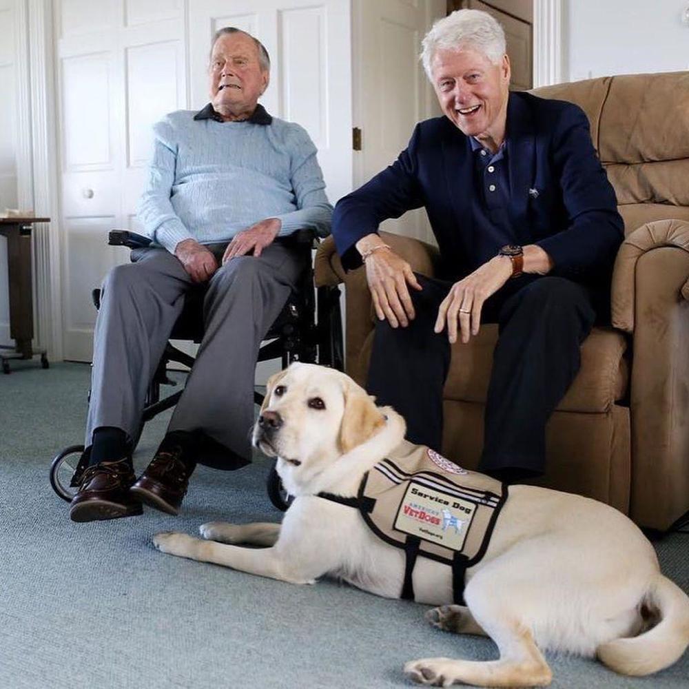 Пес Джорджа Буша-старшого зворушливо прощається з ним біля труни (фото)