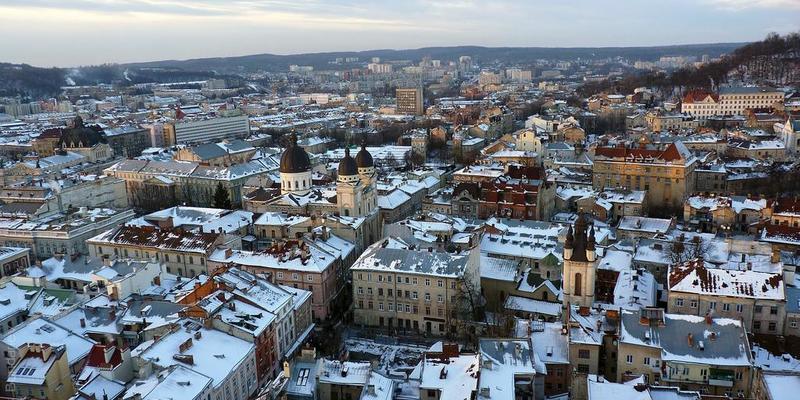 У Львові підлітки навмисно викинули кота з 9-го поверху й зняли це на відео