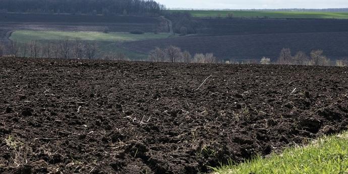 Нардепам дуже кортить розпочати продаж землі
