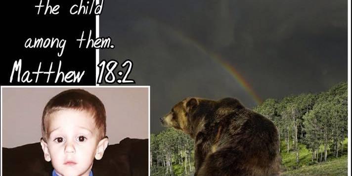 Трирічного хлопчика в США знайшли живим у лісі після 2 діб пошуків (фото)