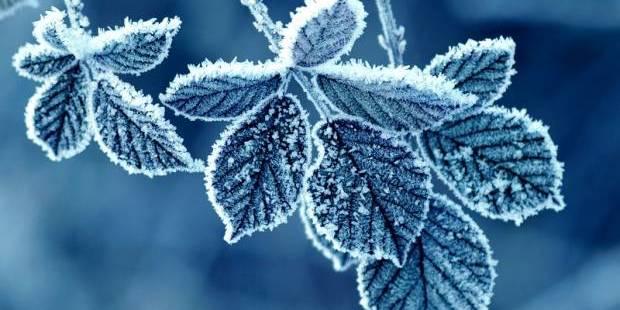Тепло, а потім - люті морози: синоптики дали прогноз погоди на лютий