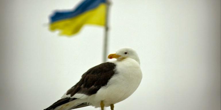 Українській антарктичній станції – 23 роки. Як усе відбувалося?(фото)