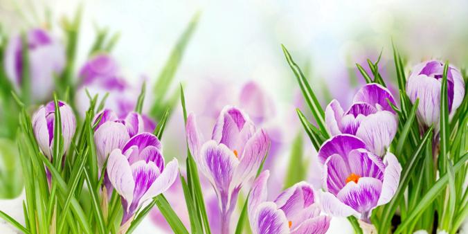 Прогноз погоди на 15 лютого: в Україну повертається весняне тепло і сонце