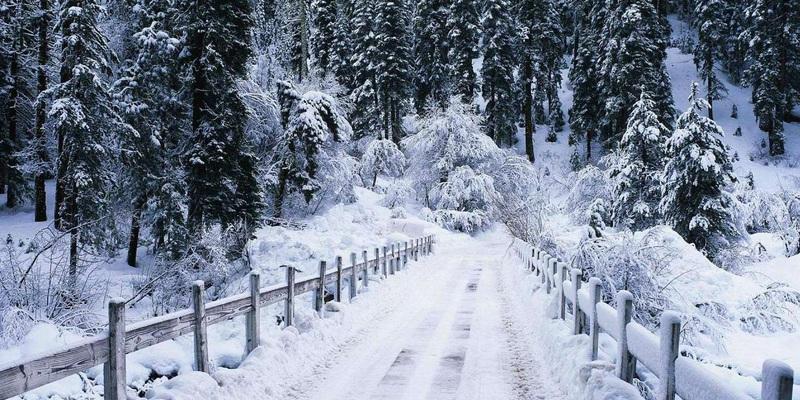 У найближчі дні в Україні очікується похолодання