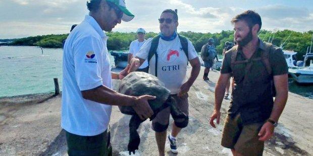 Вчені знайшли черепаху, вид якої зник 100 років тому