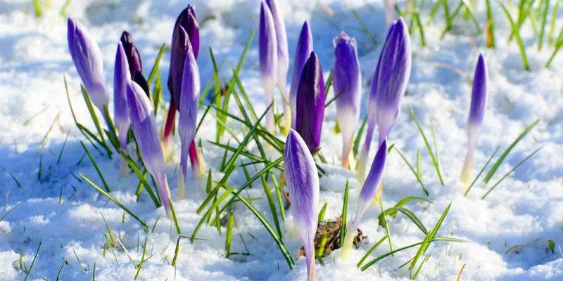 Синоптик розповіла, коли до України прийде весняне потепління