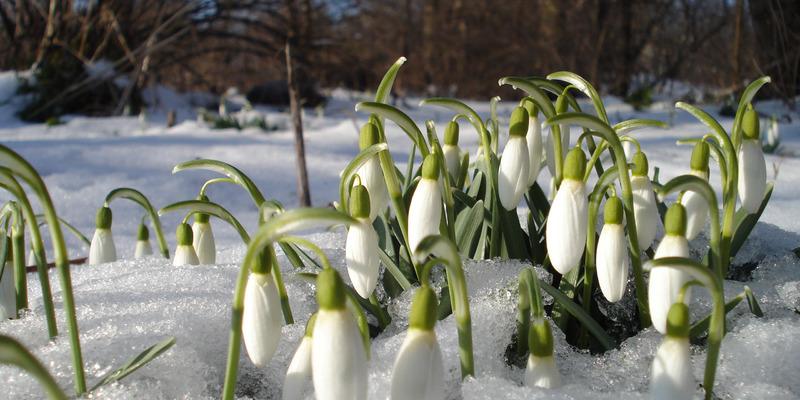 28 лютого у більшості областей України погода буде мінливою та нестабільною