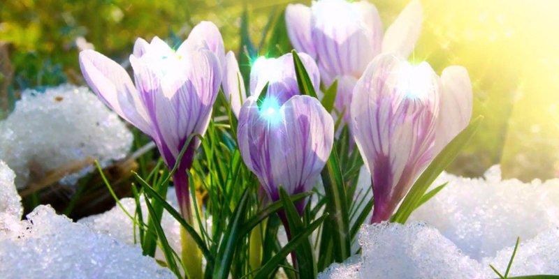 Перший день весни українці зустрінуть з мокрим снігом та «плюсовою» температурою