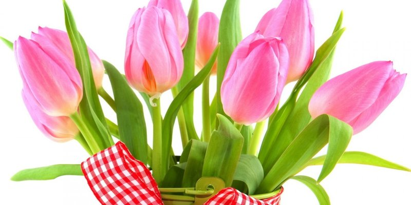 Чи варто святкувати 8 березня?