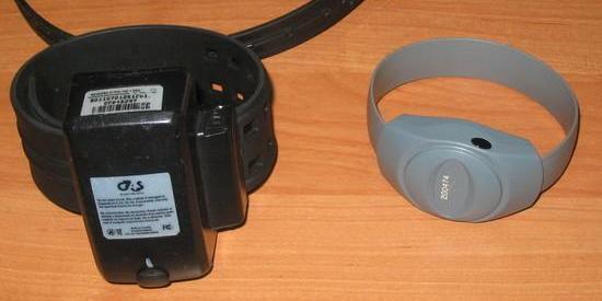 У РФ відправлений під домашній арешт чоловік пропив свій електронний браслет