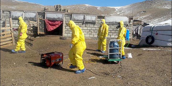 У Монголії підтвердили два випадки смерті від бубонної чуми