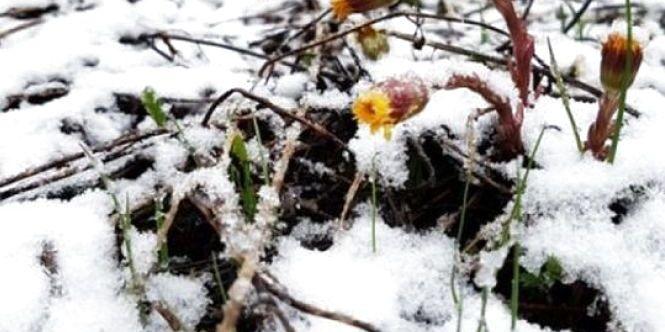Прогноз погоди: похолодання, сильні дощі і можливий мокрий сніг