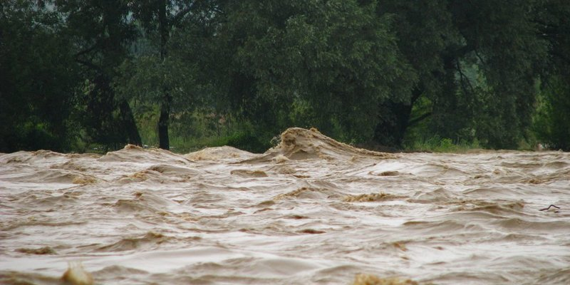 На Закарпатті знайшли тіло 11-річного хлопчика, якого напередодні змило хвилею в річку