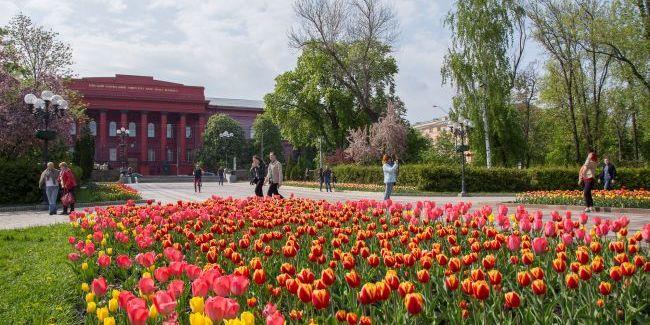 Цьогорічна весна в Києві увійшла до четвірки найтепліших в історії