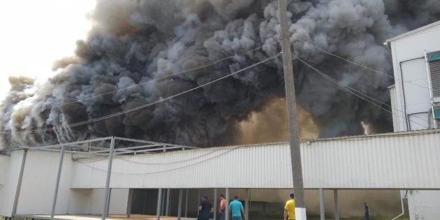 Через пожежу на птахофабриці під Києвом перевіряють повітря на токсичність