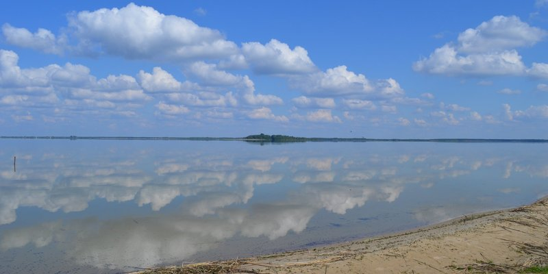 Найглибше в Україні озеро Світязь катастрофічно обміліло