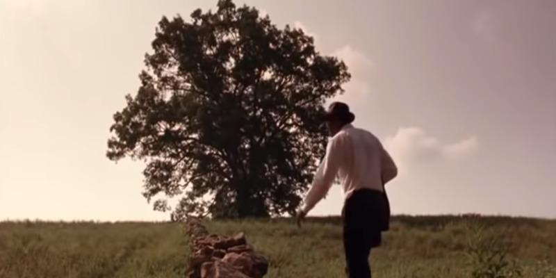 Дуб з фільму «Втеча з Шоушенка» розпиляли на сувенірні таблички