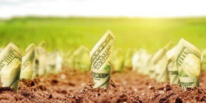 Аграрії почали акцію проти продажу землі іноземцям