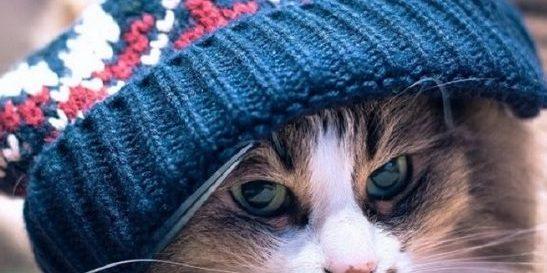 В Україну цього тижня прийде похолодання