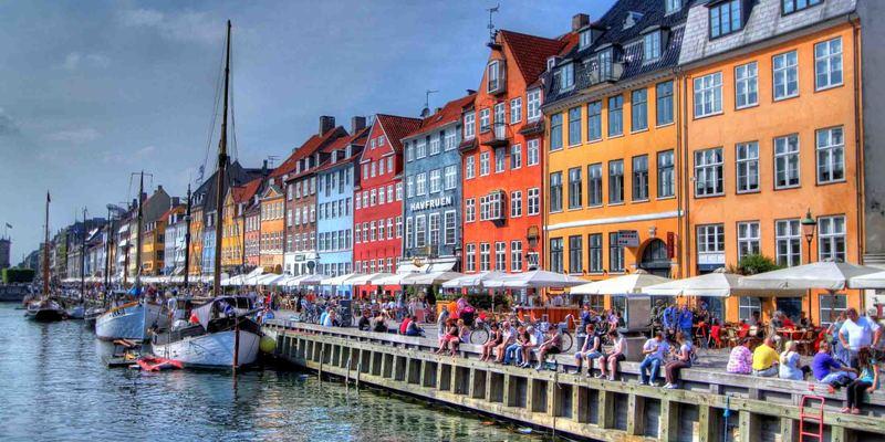 У Данії висадять мільйон дерев для розв'язання кліматичних проблем
