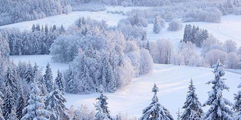 Зима може наступити дуже рано: в Європі прогнозують найсильніші морози за останні 30 років
