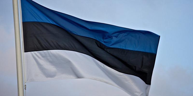 Естонський міністр незадоволений, що громадяни змушені переходити на іншу мову в закладах