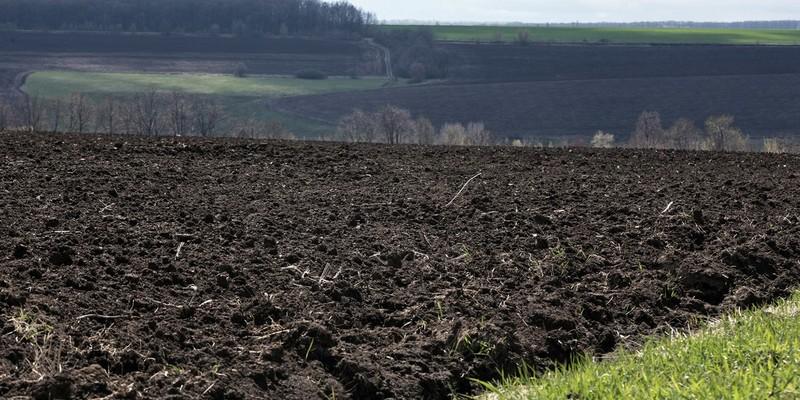 Більшість українців проти скасування мораторію на землю - опитування