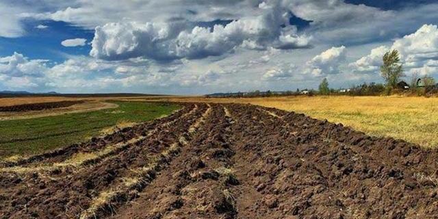 Кабмін затвердив законопроєкт про ринок землі