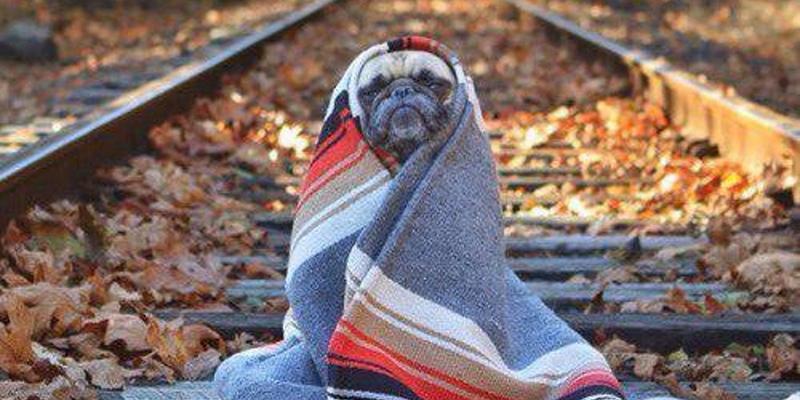 Останні теплі дні: синоптик попередила про сильне похолодання