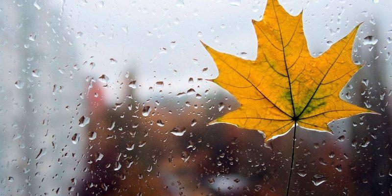 Погода на вихідні: Україну накриє дощами, температура до +22 градусів