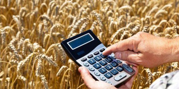 Україна успішно продає продукти харчування у країни Європи та світу