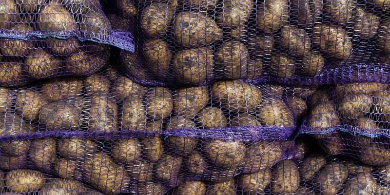 Обсяги імпорту картоплі в Україні у вересні 2019 року виявилися просто фантастичними