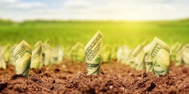 До Ради внесли оновлений законопроект про ринок землі