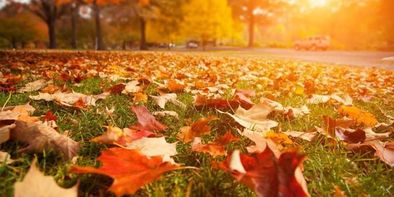 У вівторок буде по-літньому тепло: прогноз погоди