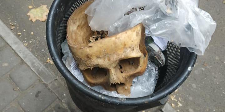 У Миколаєві в урні біля зупинки громадського транспорту знайдено череп