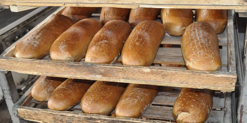 Виробництво хліба в Україні скоротилося