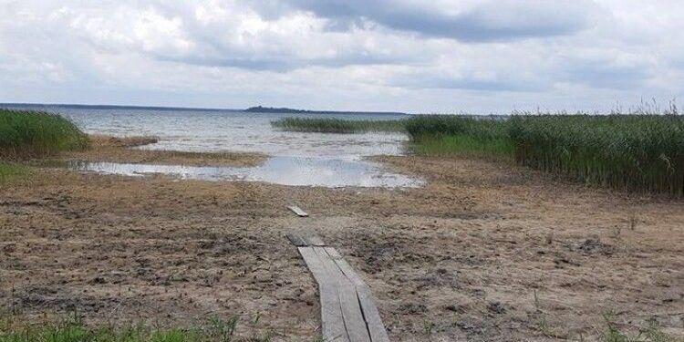 Світязь зникає: чому раптом висохло найглибше озеро України (фото)