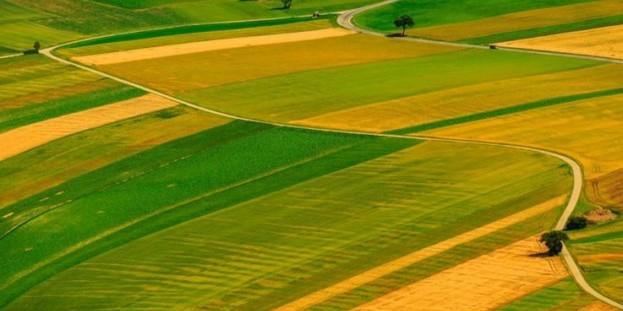 Держгеокадастр почав публікувати план перевірок земельних ділянок