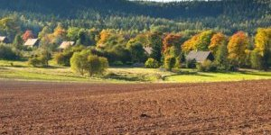 Українцям пообіцяли дешеві кредити на землю