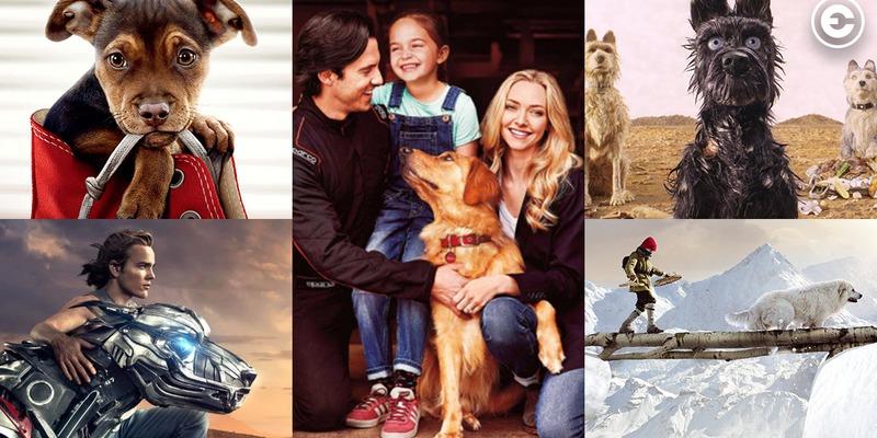 Найкращі фільми про собак для перегляду на вихідних